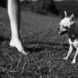 Caminar descalzos
