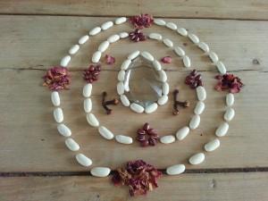 Mandala hecho con alubias (judías), azukis, pétalos de rosa y clavo
