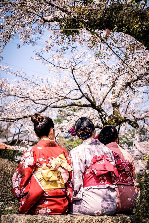 The beauty of japanese Sakura
